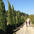 Mtb Tour - The Valdelsa and the hills of Castelfiorentino